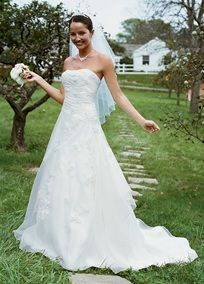 Embroidered Organza Gown with 3d Floral Details