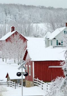 The red barn is so pretty surrounded by the mounds of newly-fallen snow!