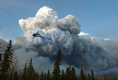 A state of emergency is declared in the province of Alberta in Canada after a wildfire forces all residents of Fort McMurray to flee their city. Work Camp, Fort Mcmurray, Time And Weather, Wild Fire, The Province, Climate Change, Photo And Video, City, Pictures
