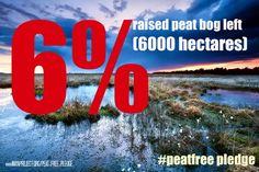 why peat matters — Project Maya