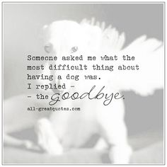 The Most Difficult Thing About Owning A Dog Pet Loss Quotes Dog Loss Quotes, Pet Quotes Dog, Animal Quotes, Losing A Dog Quotes, Dog Quotes Love, Cat Quotes, Dog Loss Poem, Quotes For Dogs, Life Quotes