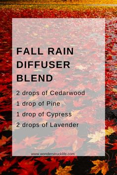 5 Must-Use Diffuser Blends for the Fall Season: Fall Rain 2 drops of Cedarwood Essential Oil 1 drop of Pine Essential Oil 1 drop of Cypress Essential Oil 2 drops of Lavender Essential Oil