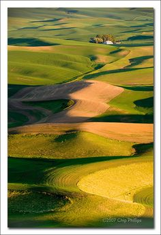 ✯ Palouse Hills - Washington