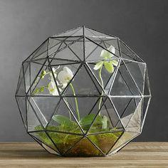 Terrarium, le mini jardin s'invite dans votre déco! - Marie Claire Maison