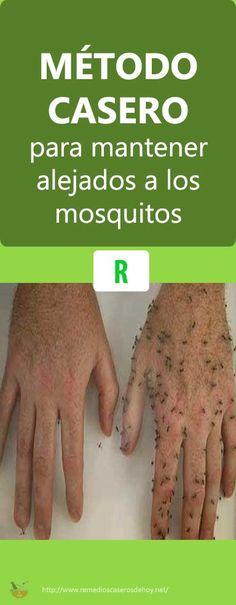 #Método #Casero #Alejar #Mosquitos