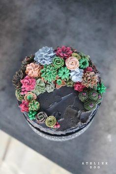다육식물. 선인장 : flowercake. soocake : 네이버 블로그