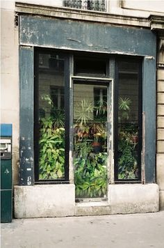 """""""Imagine if old store fronts were used to house plants like """"storage units"""" for green thumbs. generations of families could pass on these plants and then Interior Flat, Interior And Exterior, Interior Design, Pergola, Window Plants, Green Plants, Pot Plants, Store Fronts, Vintage Design"""