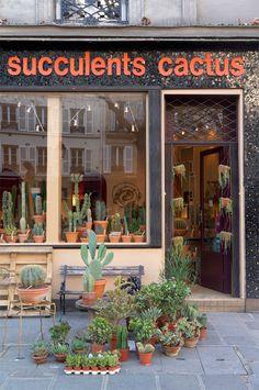 Les Succulents Cactus shop in Paris via Joelix.com