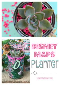 Turn your free Disney map into a DIY souvenir.  Make a Disney Maps Planter.