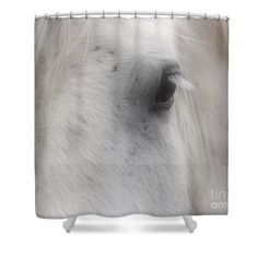 The eyes are the window to the soul.....what does this horse's eyes say.  Animal shower curtain photography by Susan.