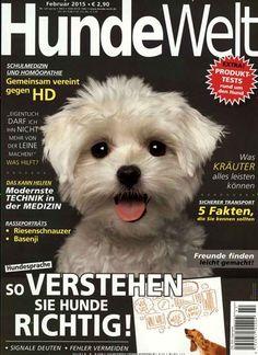 So verstehen Sie Hunde richtig! Gefunden in: HundeWelt, Nr. 2/2015