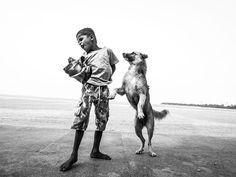 dog story culturainquieta2