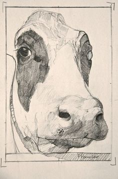 Pieter pander, welkom, pencil on paper drawn to nature in 2019 иллюстрации, Art Drawings For Kids, Amazing Drawings, Amazing Art, Cow Drawing, Drawing Sketches, Animal Sketches, Animal Drawings, Art Sketchbook, Art Inspo
