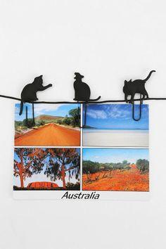 Cat Walk Photo Clip - Set Of 8