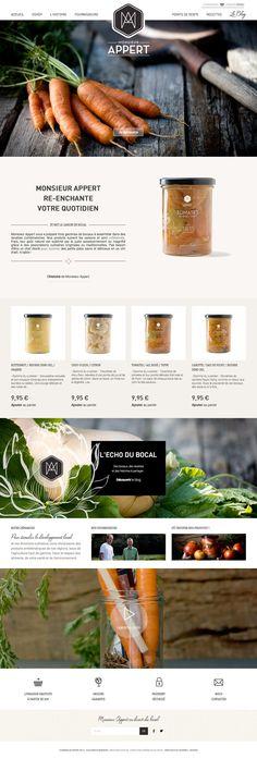 Full CSS Web Design Inspiration - Monsieur Appert