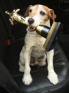 """Doggie Star Uggie Releasing His Autobiography in October 2012.     """"The Jack Russell terrier is collaborating with human biographer Wendy Holden on the project, which will include the story of his triumphant rise through Hollywood, including tales of working with stars like Reese Witherspoon in """"Water for Elephants"""" and mingling with celebs like George Clooney, Katy Perry and Jessica Simpson."""""""