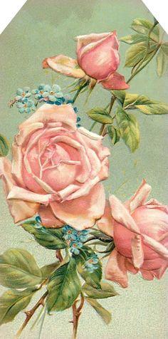 Lila y lavanda: Jardín del Corazón