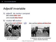 Accord des adjectifs grammaire française