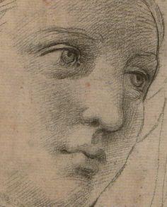 Raffaello – Testa di una musa, dettaglio - (30,5 x 22,2 cm) - disegno preparatorio all' affresco Parnaso - collezione privata