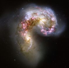 These wonderful images of the Universe were taken by the Hubble Space Telescope. This telescope named after Edwin Hubble (an American astronomer) has made about photos since In Cosmos, Hubble Space Telescope, Space And Astronomy, Telescope Images, Nasa Space, Radio Astronomy, Astronomy Facts, Spiral Galaxy, Rainbow Galaxy