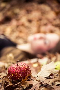 Love this apple needs to look more poisonous but love it Retelling, Fantasy World, Fantasy Photography, Snow White Photography, Artistic Photography, Poison Apples, Make Believe, Fable, Fairytale Fantasies