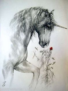Unicorn by Jenny Pride