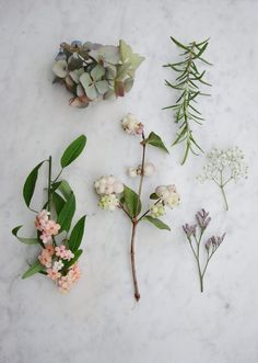 Make a floral headband by Avenue LIfestyle. Photography and styling by Holly Marder.
