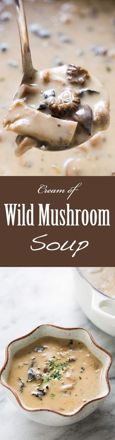 Creamy wild mushroom soup made with dried wild mushrooms, fresh mushrooms, shallots, garlic, stock, cream, sherry, and herbs. So wonderfully mushroomy! Perfect for a special occasion. On SimplyRecipes.com
