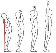 Overhead-Press-Form-Stance.jpg (452×428)