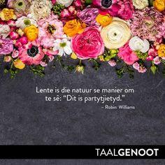 Robin Williams, Afrikaans, Floral Wreath, Language, Wreaths, Home Decor, Garlands, Flower Crowns, Door Wreaths