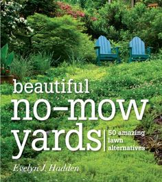 Beautiful No-Mow Yards: 50 Amazing Lawn Alternatives by Evelyn J. Presents alternative options to a grass lawn, discussing methods for converting a lawn to a garden, different types of gardens, and recommended plants. Low Maintenance Yard, Low Maintenance Landscaping, My Secret Garden, Dream Garden, Garden Planning, Lawn And Garden, Rain Garden, Garden Projects, Garden Inspiration