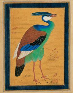 the bird mansour 17s indian moraqqa