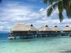 Notre voyage de noces en Polynésie : Bora Bora   Mademoiselle Dentelle Bora Bora, Tahiti, Paradis, Destinations, Cabin, Mademoiselle, House Styles, Travel, Farmhouse Wedding Venue