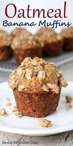 Banana Muffins Oatmeal banana muffin with an oatmeal crumb topping. These muffins are perfect for breakfast or a midday snack. via banana muffin with an oatmeal crumb topping. These muffins are perfect for breakfast or a midday snack. Gourmet Recipes, Dessert Recipes, Soup Recipes, Recipies, Dinner Recipes, Morning Glory Muffins, Mini Muffins, Low Fat Muffins, Low Calorie Muffins
