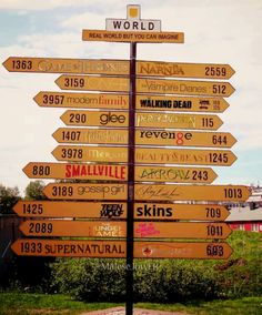 I want to go to Narnia, Harry Potter, Percy Jackson, and Hunger Games.
