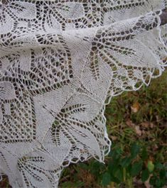 Ivory/cream shawl to match dress. Lace Knitting, Knitting Patterns, Knitted Shawls, Shawls And Wraps, Crochet Doilies, Ivory, Cream, Wood, Scarves