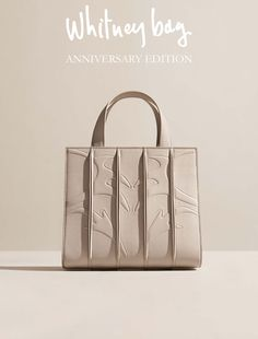 24127c3cb22d Whitney Bag DESIGNED BY RENZO PIANO for Max Mara A new pearl shade and two  sophisticated