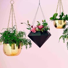 Get your geo on with these sharp looking planters as seen on The Block NZ. Hanging about has never looked so better than this Black Resin Geometric Hanging Planter! These are available in blush pink black white and mint. We've also got copper hanging planters too and they are gorgeous >>> http://ow.ly/WidTb #hangingplanter #hangingplanters #homedecor #forkeepsstore