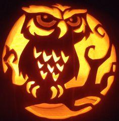 Owl on Branch Owl Pumpkin Stencil, Owl Pumpkin Carving, Amazing Pumpkin Carving, Pumpkin Carving Templates, Pumpkin Art, Spooky Pumpkin, Pumpkin Ideas, Pumpkin Contest, Zombie Pumpkins