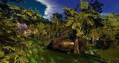 Morning Dew, Secret Places, Lush Green, Fantasy, Explore, World, Flowers, Plants, Fantasy Books