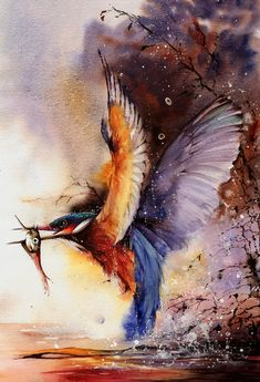 Peter Williams - Kingfisher -  watercolors