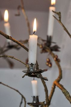 Vintage candle clips.....useful always...(with care) on foliage or anywhere..... ='s incredible ambiance!