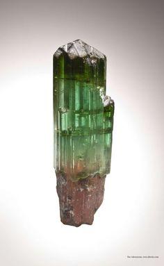 Tourmaline (scepter), Paprok Mine, Kamdesh District, Nuristan Province, Afghanistan