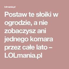 Postaw te słoiki w ogrodzie, a nie zobaczysz ani jednego komara przez całe lato – LOLmania.pl