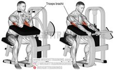 Learn how to use the machine triceps extension, an isolation and push exercise, to safely and effectively build your triceps brachii. Upper Body Hiit Workouts, Weight Training Workouts, Fit Board Workouts, Training Exercises, Muscle Workouts, Training Plan, Forearm Workout, Biceps Workout, Gym Workout Videos
