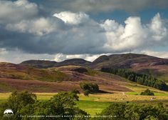 Hills of Heather, Highlands, Scotland Highlands Scotland, Walks, Destinations, To Go, Bucket, Journey, Europe, Mountains, Places