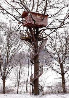 treehouses treehouses