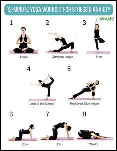 This is a 12 minute workout used to reduce stress and anxiety. This is specifically for stress reduction involving the use of yoga poses. Yoga Régénérateur, Yoga Meditation, Ashtanga Yoga, Yin Yoga, Pilates Yoga, Iyengar Yoga, Pilates Reformer, Vinyasa Yoga, Yoga Flow