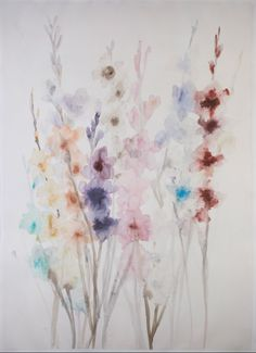 Gladiolus multicolored, Chiapsas, watercolor and ink on paper 43¨x 30¨