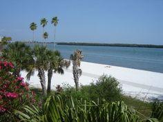 Eckerd College beach, St. Petersburg, FL, 2008 Eckerd College, Florida Usa, I School, Higher Education, Travel Usa, Palm Trees, Travel Ideas, Retirement, Surfing